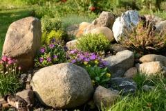 Akmenys-dideli-su-gėlytėmis